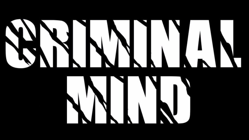 Criminal Mind USA * 91 ' Wait for the Night ' rare demo song