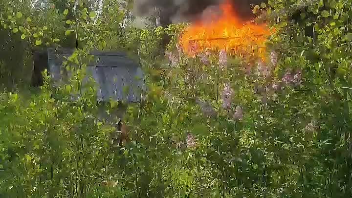 """Пожар в садоводстве """"Василиостровец"""" , ст. Горы Пожар начался на одном участке в каком то помещении..."""