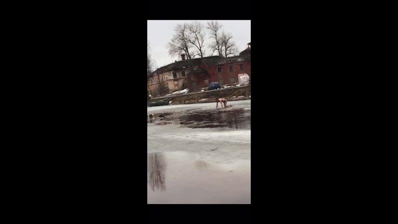 🦺В Новой Ладоге мужчина спас из канала тонущего пса