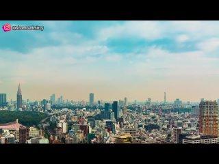 [Шамов Дмитрий] ТОКИО СЕГОДНЯ. Самый удивительный город на земле