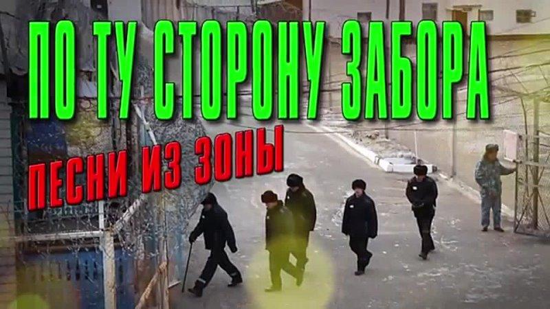 ПО ТУ СТОРОНУ ЗАБОРА mp4