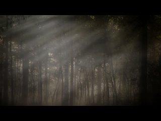 Theo Travis feat. David Longdon Big Big Train  Brilliant Trees (2021)