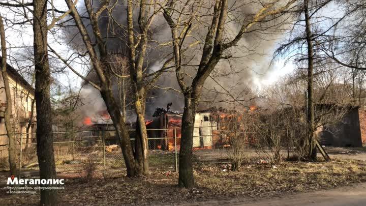 У дома №14 по улице Свободы в Красном Селе сгорели два гаража размером 15 на 20 метров. В МЧС об это...
