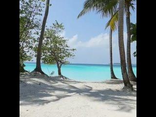 Ayada Maldives 5* Сегодня я приготовила для вас обзор пятизвездочного отеля на Мальдивах.Читайте и делитесь, на что вы в пер