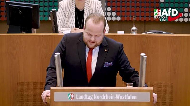 Altparteien erfinden neues Schimpfwort für Kritiker Sven Tritschler AfD