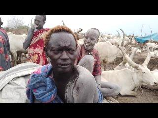 Южный Судан. Самое дикое племя мира _ Напиток из мочи коровы _ Как Люди Живут _ Media Dump