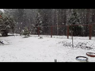 а снег все идет и идет...