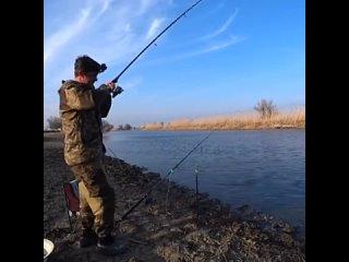 Спонтанный вечерний выезд увенчался успехом, нашёл место с бешеным клёвом воблыУдачная рыбалка 🎣 | Всё о рыбалке