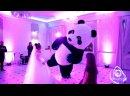 Панда в ресторане Парк холл
