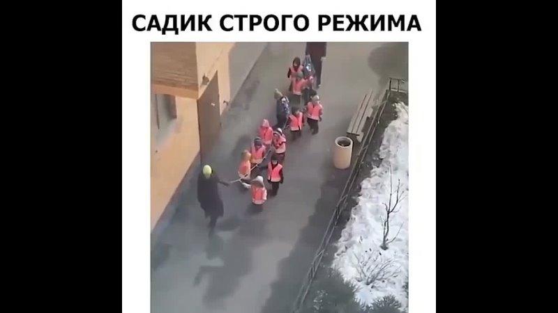 Садик строгово режима