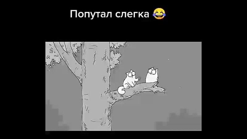 Кот Саймона 😸