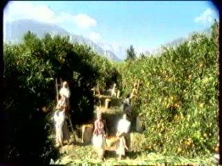 Рекламный блок (ОРТ, март 2001) (3) VHSRip