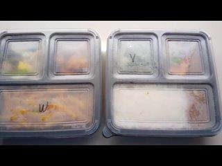 Обед на карантине в Сингапуре. Три вида кухни: Азия, Европа, Веганы