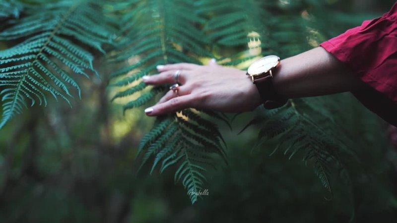 Медитация умиротворения | Связь с природой | Звуки природы | Звуки утреннего леса | Красивая музыка
