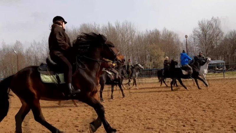 Семинар по конному фехтованию на Конной базе Храброво 2021