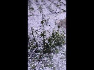 VIDEO-2021-05-30-18-31-21.mp4