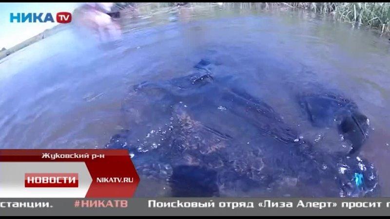 Дайверы из нескольких городов России съехались чтобы очистить озеро Огублянка