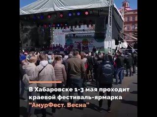 Приют для бездомных животных «Милосердие» на «АмурФесте» получил подарок от главы края