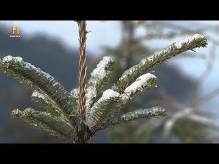 """History Channel: В изоляции / Alone / Сезон 2 Серия 11 """"Winters Fury"""""""