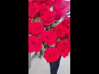 розы красные это вау❤