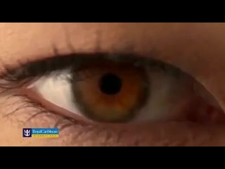 Видео от Elena Sokolovskaya