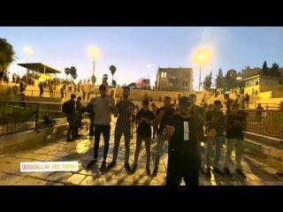 Израильские животные атаковали палестинцев во время того, как они молились у Дамасских ворот в оккупированном Иерусалиме.