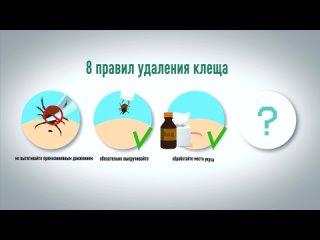 «Как правильно удалить клеща и транспортировать его в лабораторию» -  - серия роликов для медицинского центра «Аскомед»
