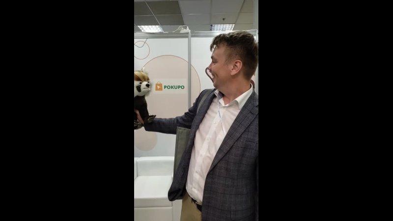 Видео от Платформа для интернет бизнеса Pokupo