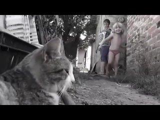 «Детский ад»: телеканал «Россия 24» показал спецрепортаж о детях прифронтового Донбасса