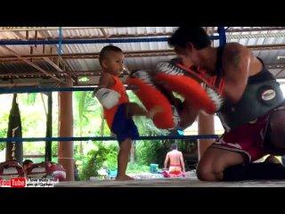 Золотой реб нок Муай Тай - ему 2 года - Golden kid Muay Thai - he is 2 years  (720p).mp4