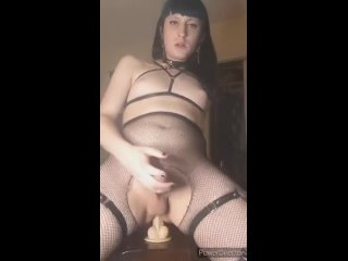 Порно с Транси Шлюшкой   Сексуальная Членодевка   Hot Dickgirls Porn   Shemales Porn Riding and touching my girl cock. I'm Zuzu