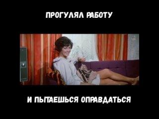 MovaviClips_Video_84