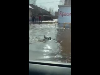 Город Давлеканово в Башкирии затопило водой из-за разлива реки - местные жители ловят рыбу прямо на дороге