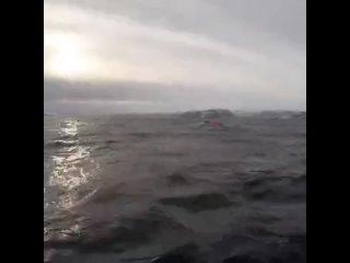 Морская рыбалка в Баренцевом мореУдачная рыбалка 🎣 | Всё о рыбалке
