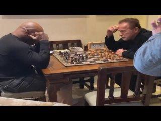 Шварц соревнуется с Тайсоном как в шахматах, так и в гольфе ... Знайте историю