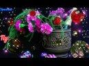 Хорошего отдыха в этот Весенний Вечер Добрый Вечер музыкальная открытка.mp4