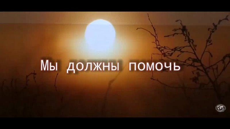 Трейллер Красное и чёрное ВДЦ Океан