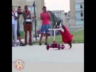 Призрачный гонщик!