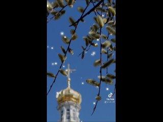 Верба распустилась, в храме ждут чудес.Благодать спустилась с голубых небес.В сердце растворится звон колоколов,Солнце заискр