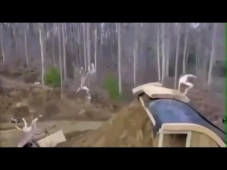 Суровый аквапарк 🤣