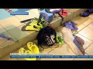 В Пензенской области по делу об отравлении детей в бассейне задержан заместитель директора спортшколы