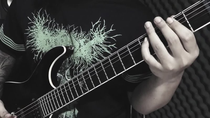 ULO Seed of Corpse Dung Ft Angel Ochoa Guitar Playthrough Brutal Mind 2021