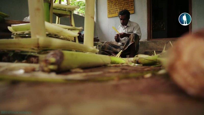 Люди силы 10 Шри Ланка Тени злых духов в сумерках Канди Познавательный мистика исследования 2015