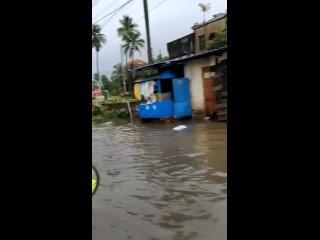 Сильные грозы обрушились на некоторые районы Западной Бенгалии, в результате чего погибли 8 человек и пострадали посевы, Индия