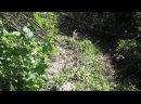 Видео от Забытый рубеж