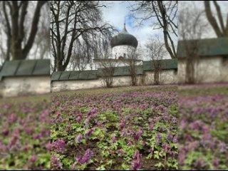Весна в Мирожском монастыре