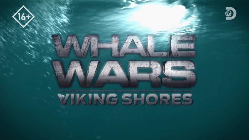 Китовые войны Фарерские острова