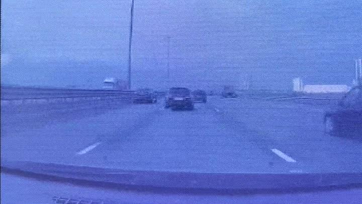 На КАДе водитель попытался спасти лисенка, выбежавшего на дорогу, примерно за 2-2,5 км. до съезда на...