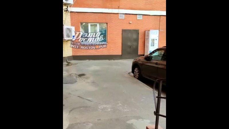 Нашествие змей в Александровке 21 06 21 Это Ростов на Дону