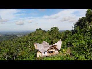 Как ЕВА и АДАМ! БАМБУКОВЫЙ ДОМ на ГОРЕ! ОДНИ в ДЖУНГЯХ БАЛИ! Laputa Bali Agung!